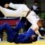 Logro Judo
