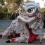 Shaolin Dragon