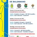 SECTOR CAMPEONATO DE ESPAÑA CADETE BALONMANO MASCULINO's Cover