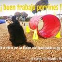 http://www.logronodeporte.es/web/images/groupphotos/44/190/thumb_155ec4c793d96e9f11ef0866.jpg