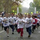 http://logronodeporte.es/images/groupphotos/62/152/thumb_4112b9cebc5209ce69c617a2.jpg