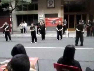 Abanico del Pequeño Dragon de Tai Chi Chuan-Shaolin Dragon